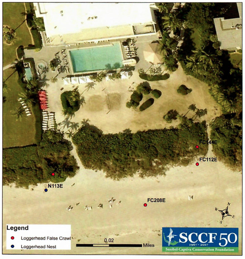sanibel island turtle nesting map 2017 sundial