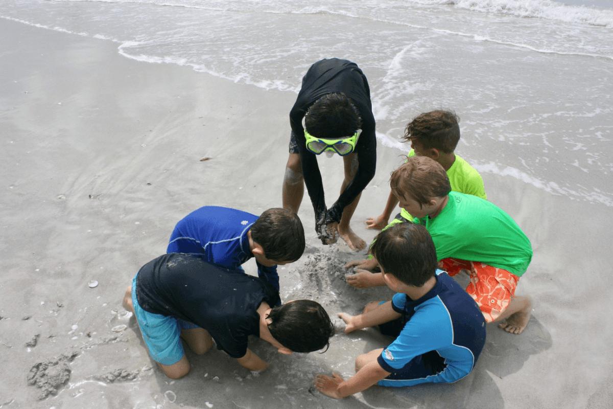 sanibel sea school sundial camp kids digging