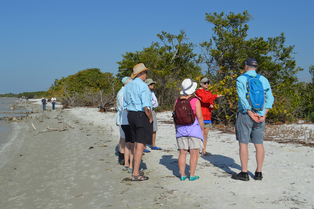 sanibel sea school wetland tour