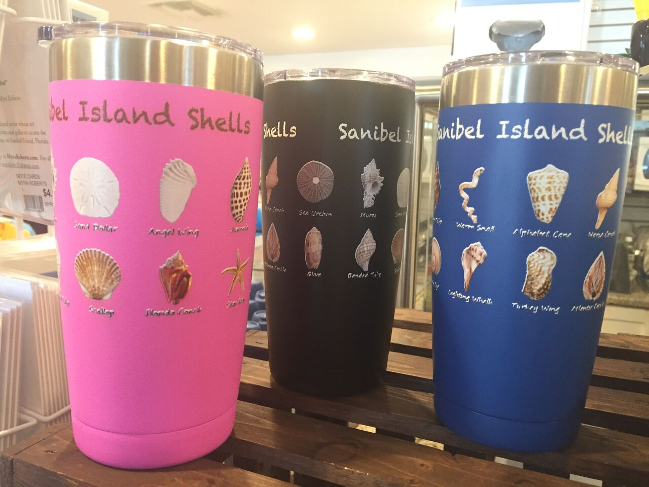 insulated thermos tumblers shells ocean themed