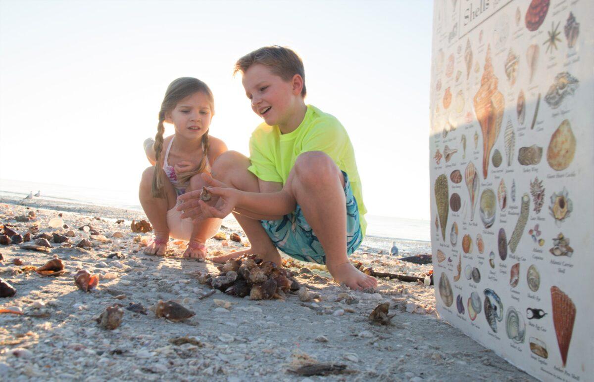 kids shelling sanibel island