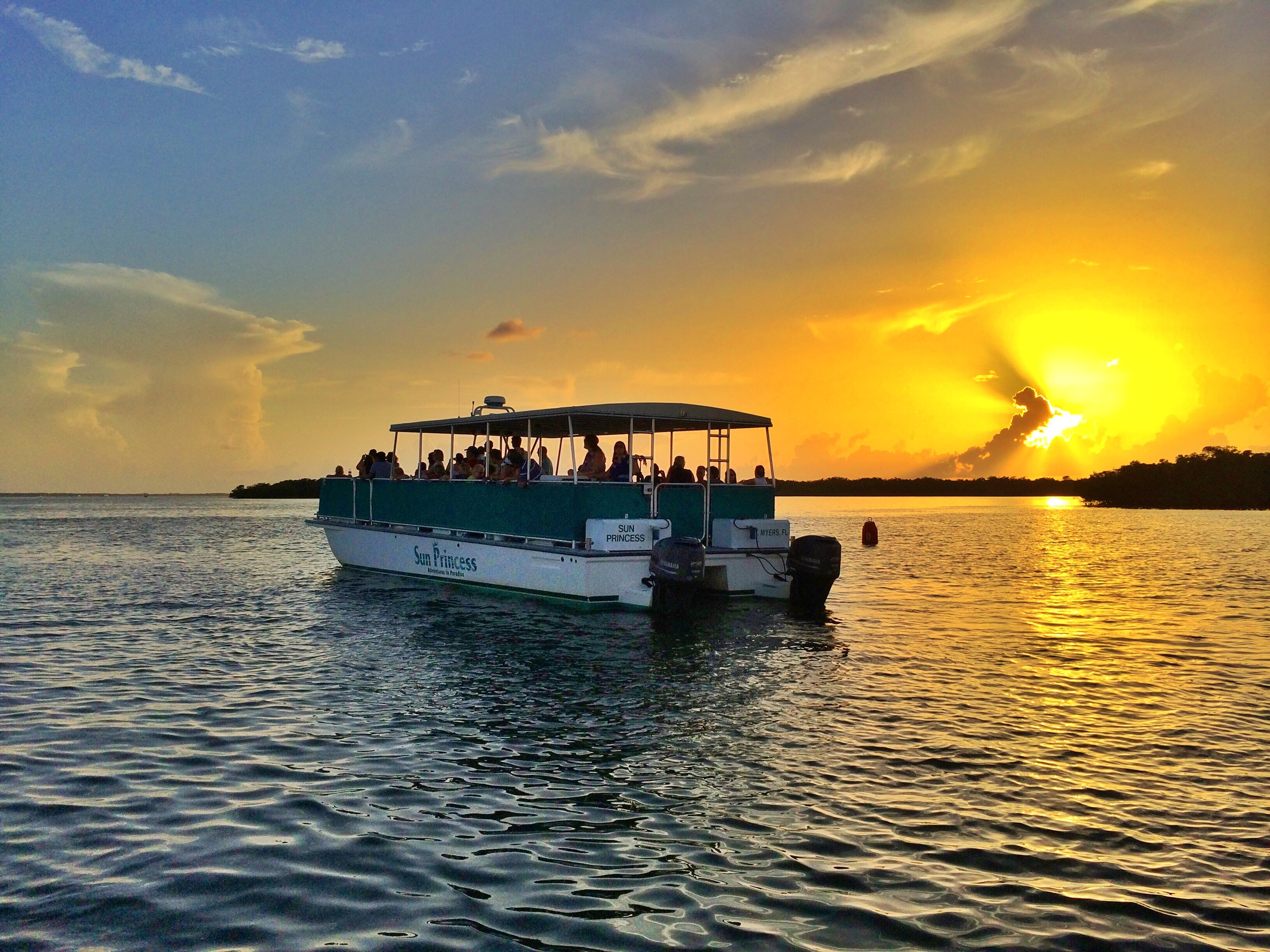 adventures in paradise sunset dolphin cruise